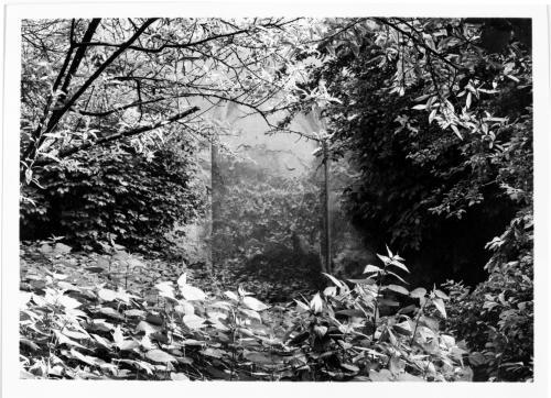 Gigli, Attilio, Bologna, Giardino interno con veduta prospettica, gelatina/ pellicola, CC BY-NC-ND