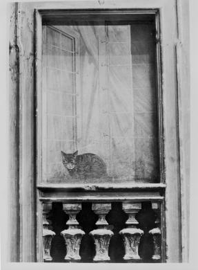 Gigli, Attilio, Bologna, cortile interno, veduta trompe-l'oeil, gelatina/ pellicola, CC BY-NC-ND