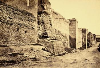 Archivio Fotografie dell' Ottocento