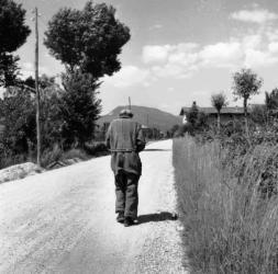 Archivio Fotografi del Friuli Venezia Giulia