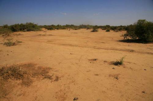 Collettivo Semi Rari, Progetto Fiume Niger - Effetti della cattiva irrigazione, Digitale, CC BY-SA