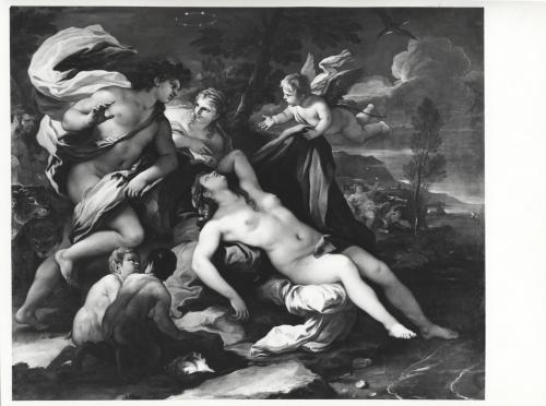 Umberto Tomba, Luca Giordano, Bacco e Arianna, Museo di Castelvecchio, Verona, CC BY-SA
