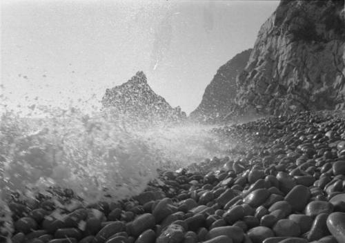 Nocera, Enzo, Ritratto del Monte. Da Camogli a Levanto via bosco 1974, gelatina bromuro d'argento / carta, CC BY-NC-ND