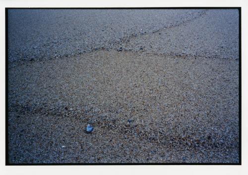 Hammacher, Arno, Atlantico, Portogallo, Estremadura. Mytilus edulis, marea vuota, stampa cromogenica / carta / cornice, CC BY-NC-ND