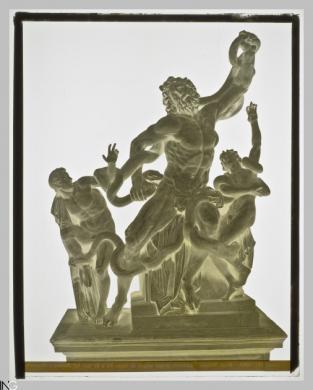 Studio Vasari (Roma, 1870 ca.-1910), Roma. Museo Vaticano. Il gruppo del Laocoonte scolpito da Agesandro, 1880-1900 ca, Negativo originale alla gelatina bromuro d'argento, CC BY-SA
