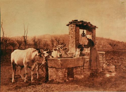 Filippo Rocci (Fara Sabina, 1881 – Rieti, 1965), Al pozzo, 1910-11, resinotipia, CC BY-SA