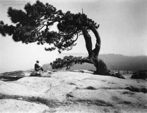Sella, Erminio, Yosemithe Valley, 1898, Lastra di vetro alla gelatina al bromuro d'argento, CC BY-SA