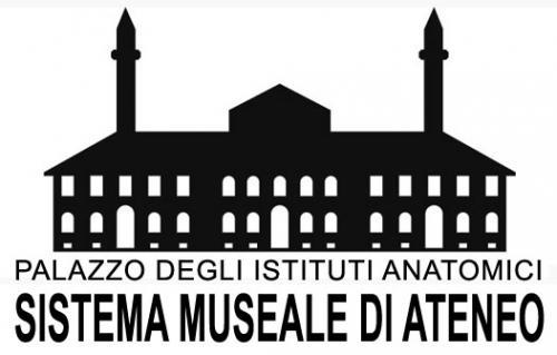 Logo Sistema Museale di Ateneo – Università degli Studi di Torino