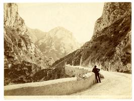 Fondo fotografico Biblioteca Oliveriana