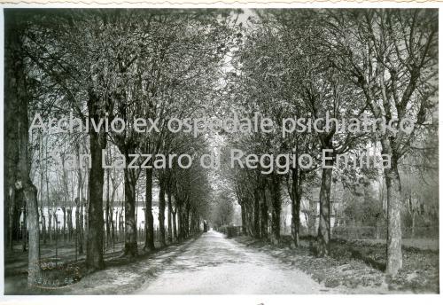 Il parco del San Lazzaro, CC BY-SA