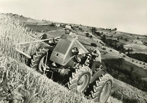 Anonimo, Trattore SAME DA 25 DT al lavoro, 1957, Gelatina bromuro d'argento/carta, CC BY-NC-ND