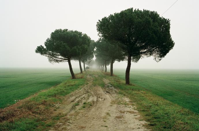 Archivio Lugo Land